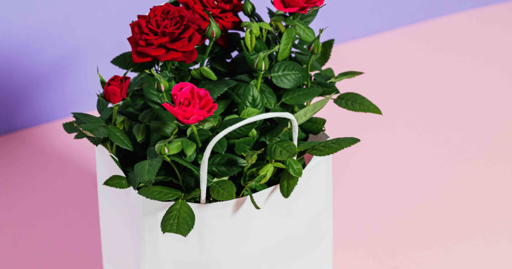 online shopping to send flowers